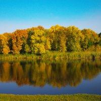 Золотая Осень :: Марина Воробьёва