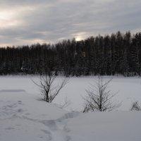Зимний закат. :: Виктор ЖИГУЛИН.
