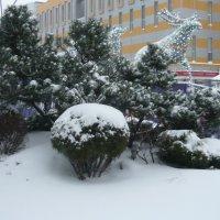 Торопится новогодняя упряжка :: Вера Щукина