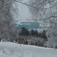 Холодно, холодно, холодно и ещё раз холодно за моим окном :: Владимир Максимов