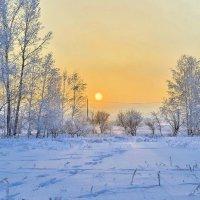 Зимний Рай :: Дмитрий Самарин