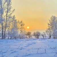 Зимний Рай :: андрей Соколов