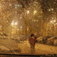 Елена Шахова - Человек в городе сквозь стекло авто