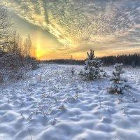 январь :: Андрей Иванов