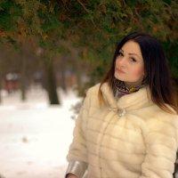 Зимнее фото :: Владимир Лупенко