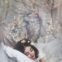 Сладких  снов... :: Ольга Чистова