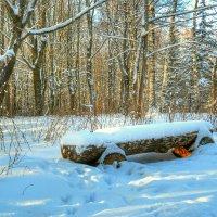 Занесённая снегом :: Милешкин Владимир Алексеевич