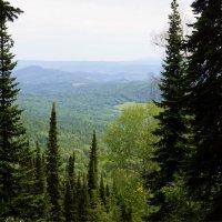 Вид с горы Синюха :: Наталия Григорьева