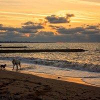 Вечерком на море :: Виктор Мороз