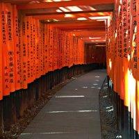 Ворота Храма Фусими Инари в Киото :: Tatiana Belyatskaya