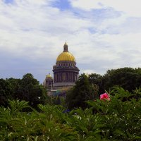 Петербург :: Анна Куценко