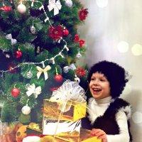 Котенок счастлив :: Ольга Елина