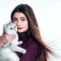 Котята :: Каролина Король