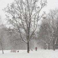 Зимний город :: Андрей Михайлин