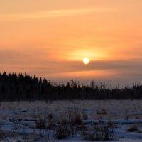 Мороз и солнце :: Вероника Изотова