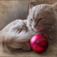 Вот и отшумели праздники.....(1) :: Людмила Богданова (Скачко)