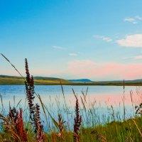 Берег озера :: юрий Амосов