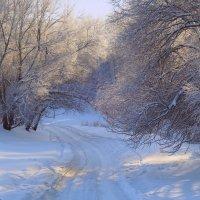 Время зимы... :: Елена Ярова