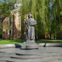 Памятник  Юрию  Дрогобычу  в  Дрогобыче :: Андрей  Васильевич Коляскин