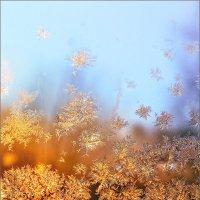 Снег кружится, летает, летает... © :: Александр Никитинский