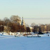 Зимний денек :: irina