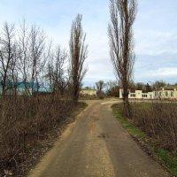 Юровка, 16 января :: Михаил Тихонов