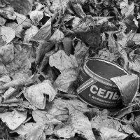 Осенний блюз :: Ольга Мансурова