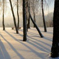 Морозным утром :: Kliwo