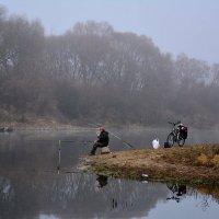 Ловись рыбка большая и маленькая :: Paparazzi