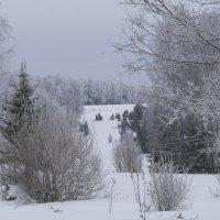 Рождественский морозный денёк :: Владимир Максимов