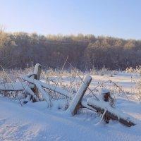Затейны линии подкошенных оград – как веера, упавшие в сугробы... :: Елена Ярова