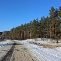 зимняя дорога :: Владимир Сергеевич