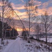 Палитра зимнего утра :: Николай Белавин