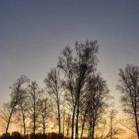 на закате :: Николай Мальцев