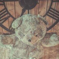 Уснул наш зайчик :: Дмитрий Чурсин