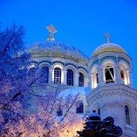 Зима в Кронштадте :: Владимир Шутов