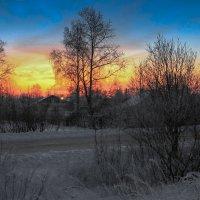 Утро :: Александр Shamardin