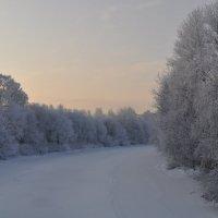 Зимушка-Зима :: missis.litsis Елена