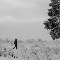 Очень зимнее ЧБ :: Евгения Кирильченко