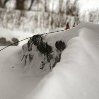 snowdrift :: Сергей Зорин