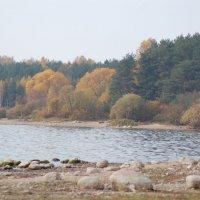 Вилейское водохранилище :: Михаил Шивцов