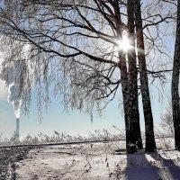 Прятки с солнцем. :: Наталья Юрова