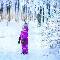 Зимняя сказка в Санкт-Петербурге :: Юлия Ерошевская