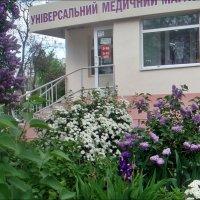 Радости мая :: Нина Корешкова