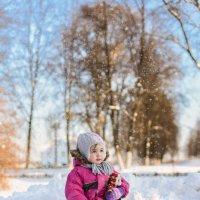 Зима.. :: Вера N