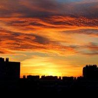 Осеннее небо на закате. :: Светлана Салахетдинова