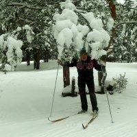 Начало лыжного сезона 2016 :: Валерий Жданов