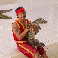 crocodile :: Дамир Белоколенко