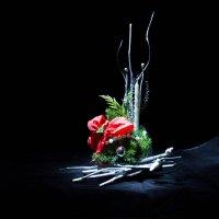 К Рождеству :: Наталья Вельди