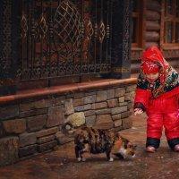 Зимние прогулки :: Валерия Ступина